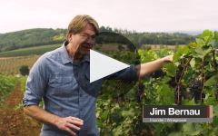Willamette Valley Vineyards Stewardship of the Land Winery Video