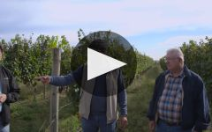 Altocedro Learn About Altocedro Winery Video