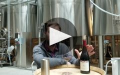 Jonata Winery Video