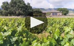Talbott Winery Video