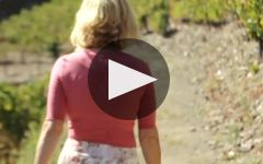 Quinta de la Rosa Winery Video