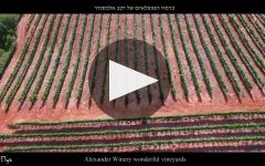 Alexander Winery Video