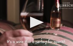 Lucien Albrecht Winery Video