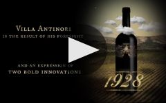 Antinori Winery Video