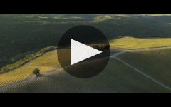 Castiglion del Bosco Winery Video