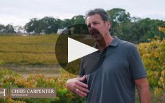 Hickinbotham Winery Video