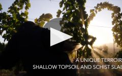 Ultimate Provence Winery Video