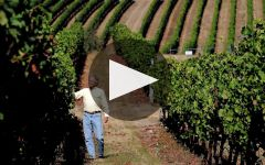 Benton Lane Winery Video