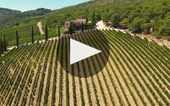 Brancaia Winery Video