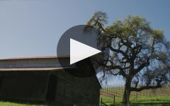Rodney Strong Vineyards Winery Video