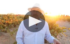 La Cana Winery Video