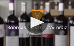 Bodegas Valderiz Winery Video