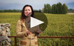 Catena Learn More About Adrianna Vineyard Winery Video