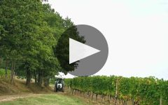 La Scolca Winery Video