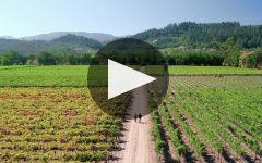 Quilt Winery Video