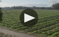 Voyager Estate Winery Video