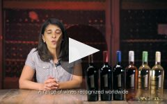 Antigal Winery Video